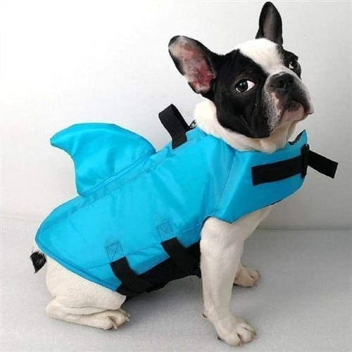 Dog-Life-Vest-With-Fi-iwantthisandthat2.jpeg