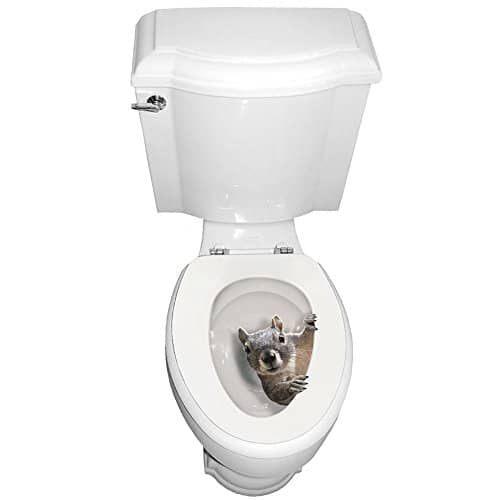 toilet-seat-decal-Squirrel-prank-iwantthisandthat2